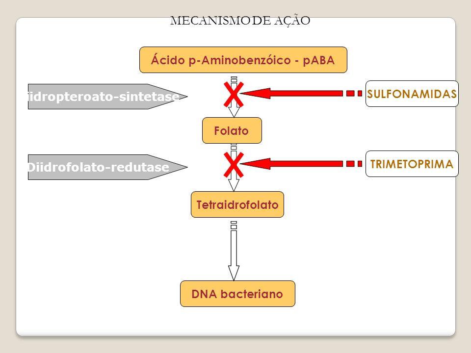 MECANISMO DE AÇÃO Ácido p-Aminobenzóico - pABA Folato Tetraidrofolato DNA bacteriano Diidropteroato-sintetase Diidrofolato-redutase SULFONAMIDAS TRIME