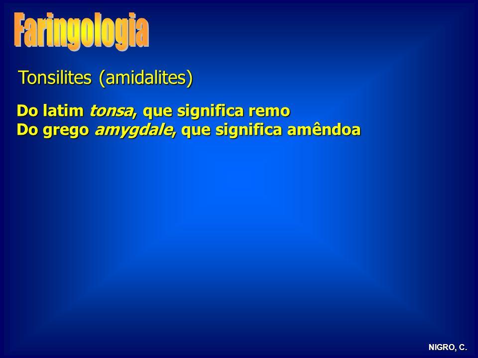 NIGRO, C. Tonsilites (amidalites) Do latim tonsa, que significa remo Do grego amygdale, que significa amêndoa