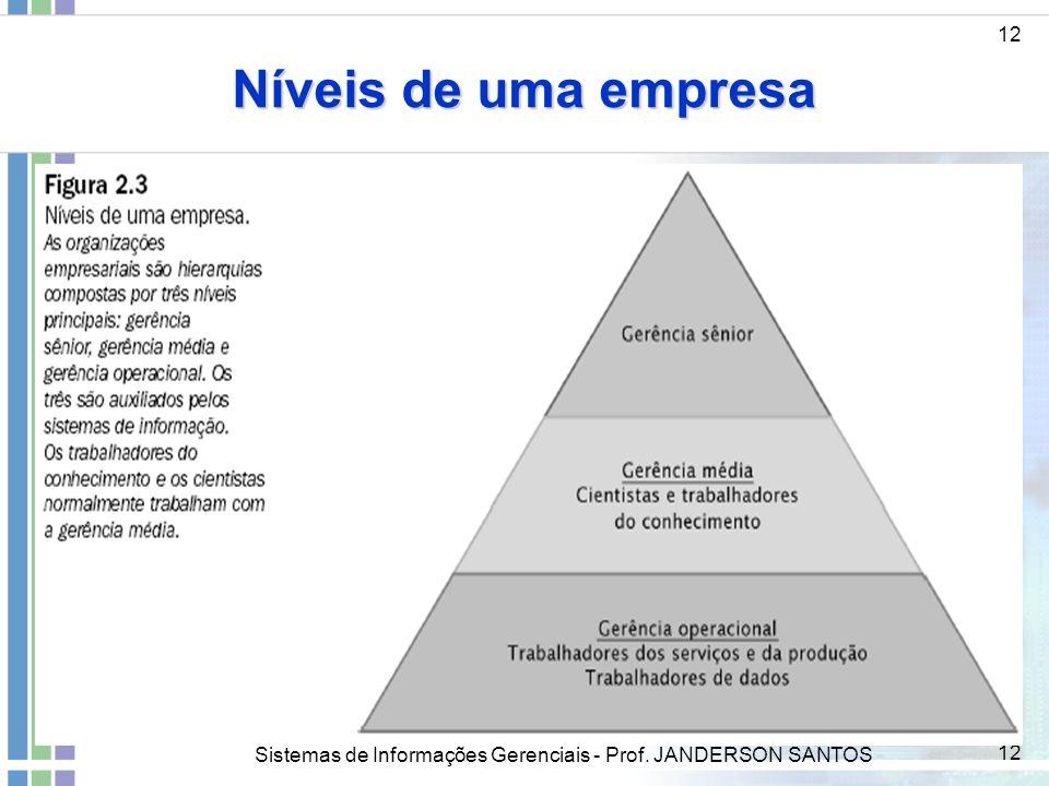 Sistemas de Informações Gerenciais - Prof. JANDERSON SANTOS 12 Níveis de uma empresa 12