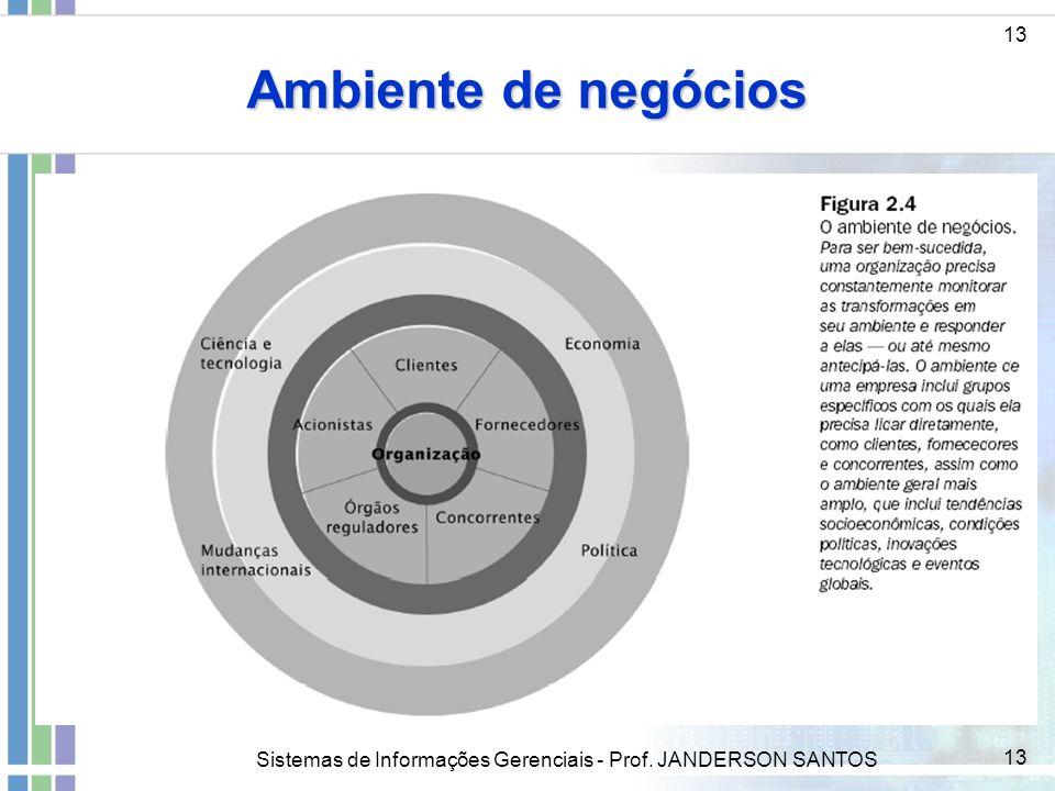 Sistemas de Informações Gerenciais - Prof. JANDERSON SANTOS 13 Ambiente de negócios 13