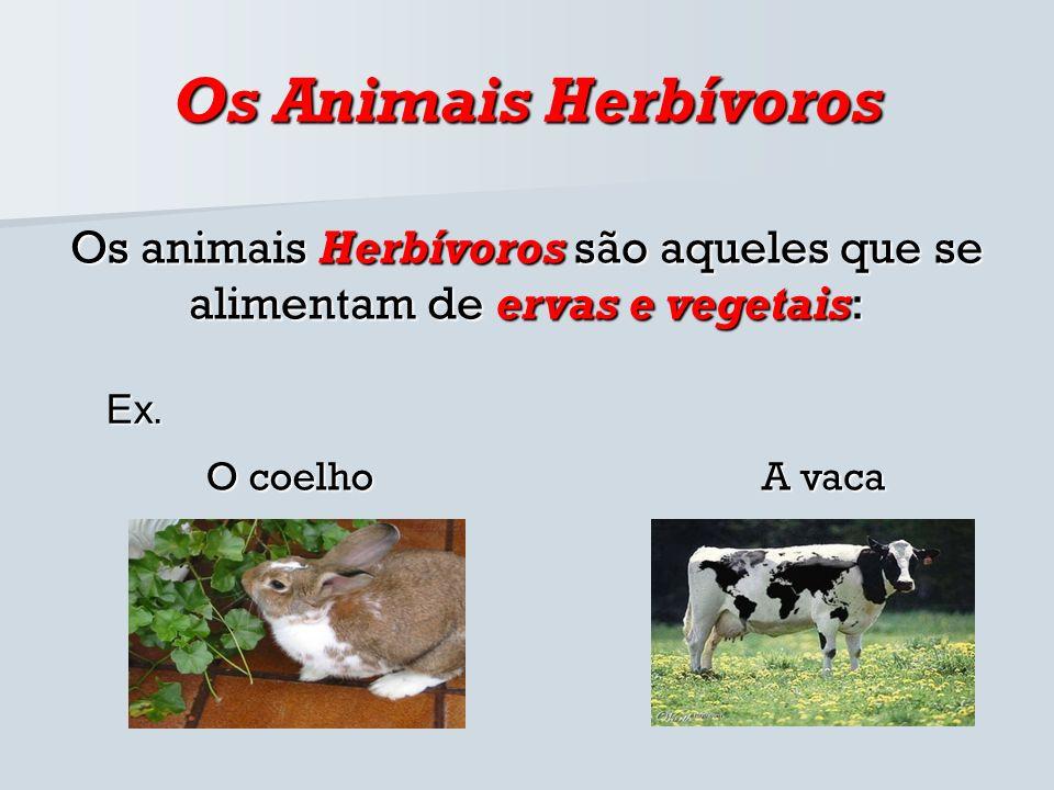 Os Animais Herbívoros Os animais Herbívoros são aqueles que se alimentam de ervas e vegetais: O coelho Ex. A vaca