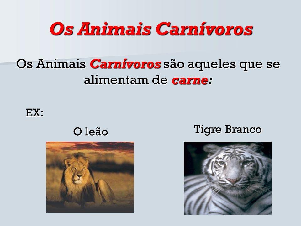 Os Animais Carnívoros Os Animais Carnívoros são aqueles que se alimentam de carne: Tigre Branco O leão EX: