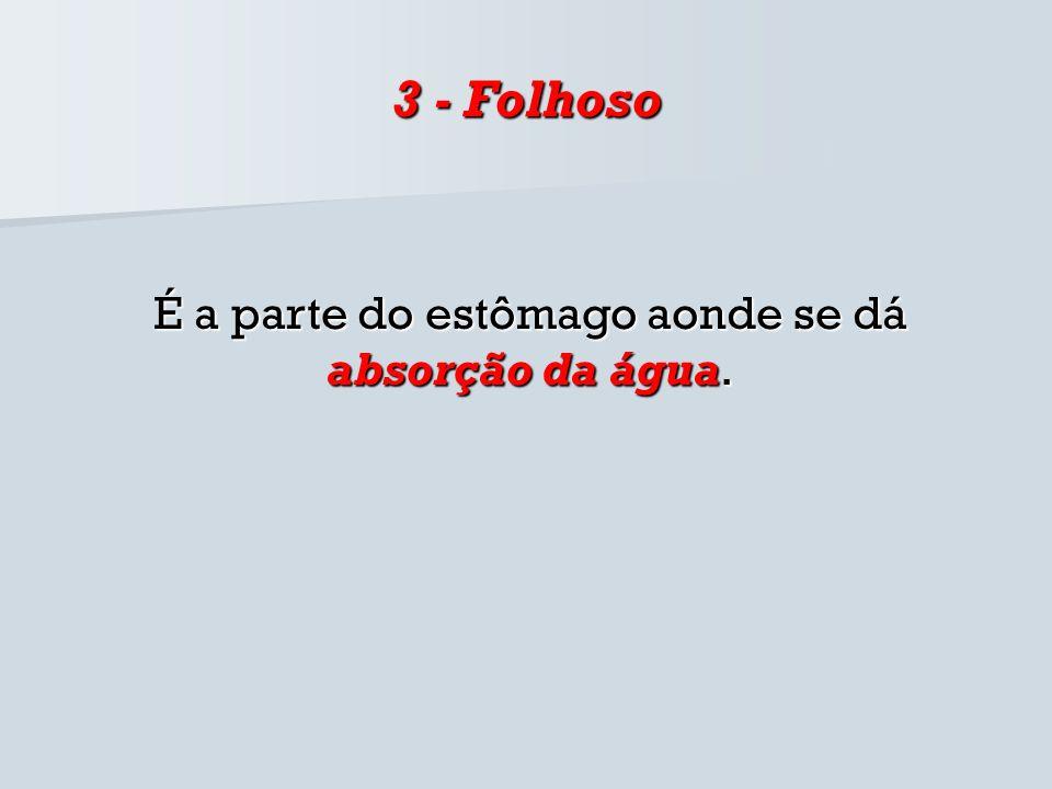 3 - Folhoso É a parte do estômago aonde se dá absorção da água.