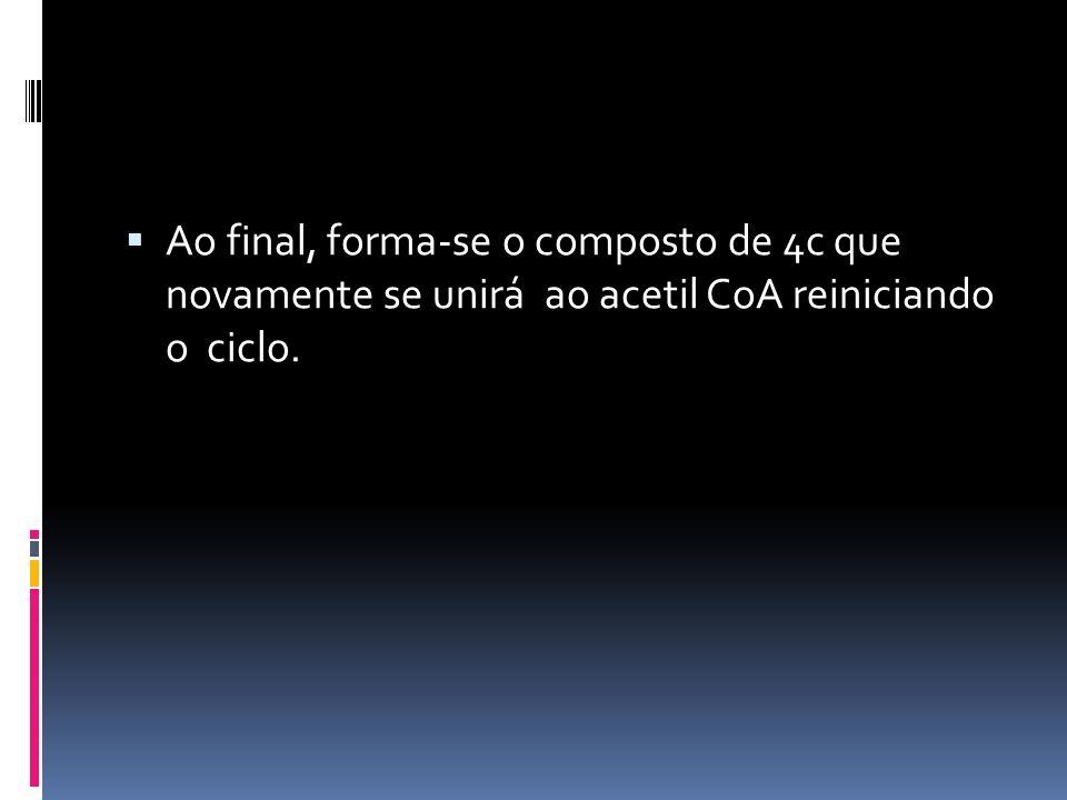 Ao final, forma-se o composto de 4c que novamente se unirá ao acetil CoA reiniciando o ciclo.