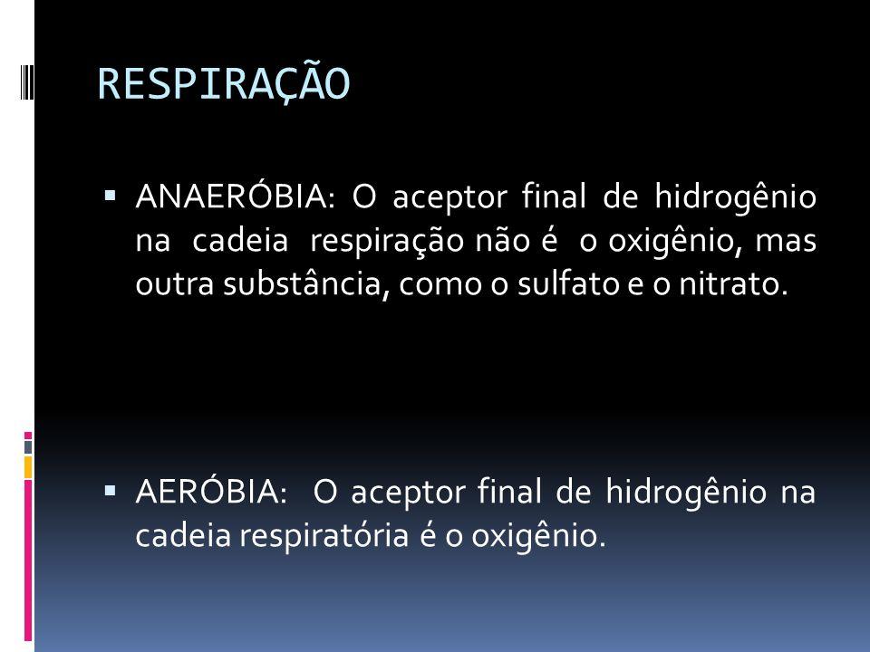 RESPIRAÇÃO ANAERÓBIA: O aceptor final de hidrogênio na cadeia respiração não é o oxigênio, mas outra substância, como o sulfato e o nitrato. AERÓBIA: