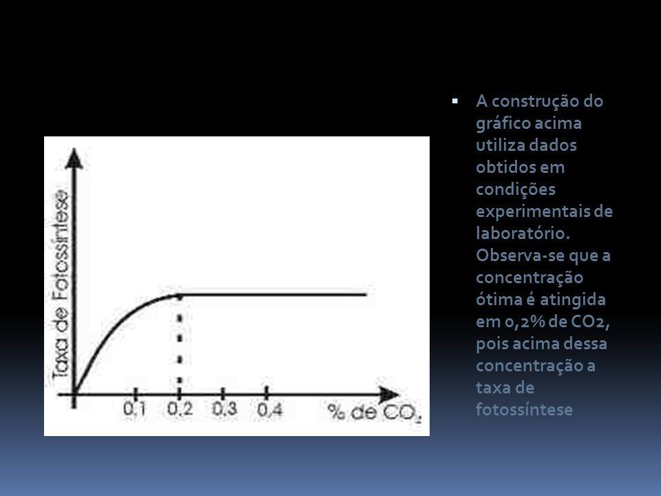 A construção do gráfico acima utiliza dados obtidos em condições experimentais de laboratório. Observa-se que a concentração ótima é atingida em 0,2%