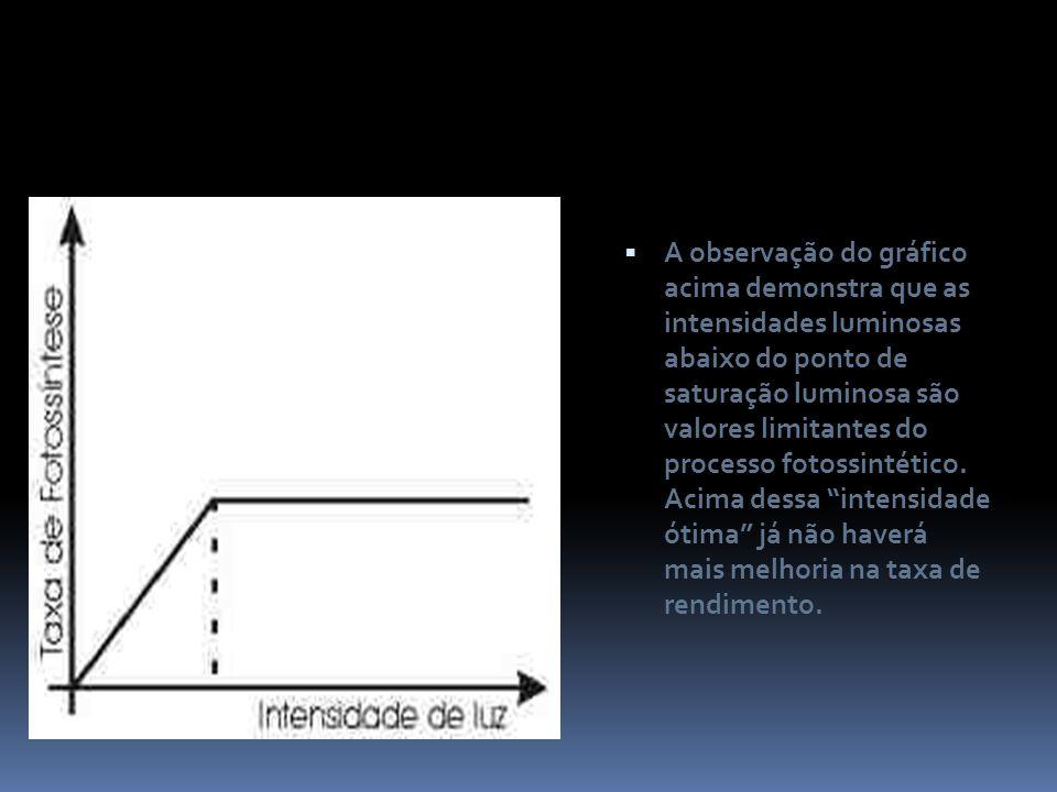 A observação do gráfico acima demonstra que as intensidades luminosas abaixo do ponto de saturação luminosa são valores limitantes do processo fotossi
