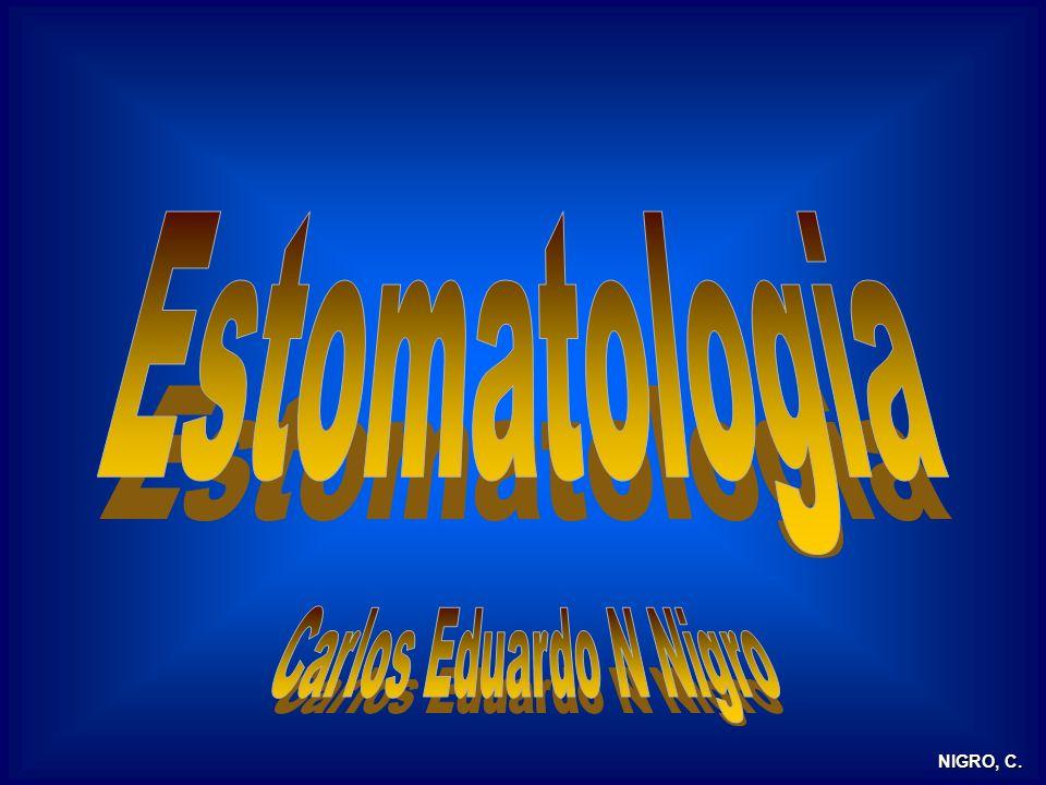 Estomatologia Parte 1 Malformações Congênitas Lesões Brancas Lesões Vesicobolhosas Lesões Aftóides Parte 2 Manifestações Bucais das doenças sistêmicas sistêmicas Câncer de Boca Halitose