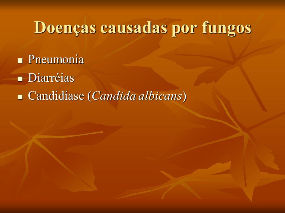 Doenças causadas por fungos Pneumonia Pneumonia Diarréias Diarréias Candidíase (Candida albicans) Candidíase (Candida albicans)