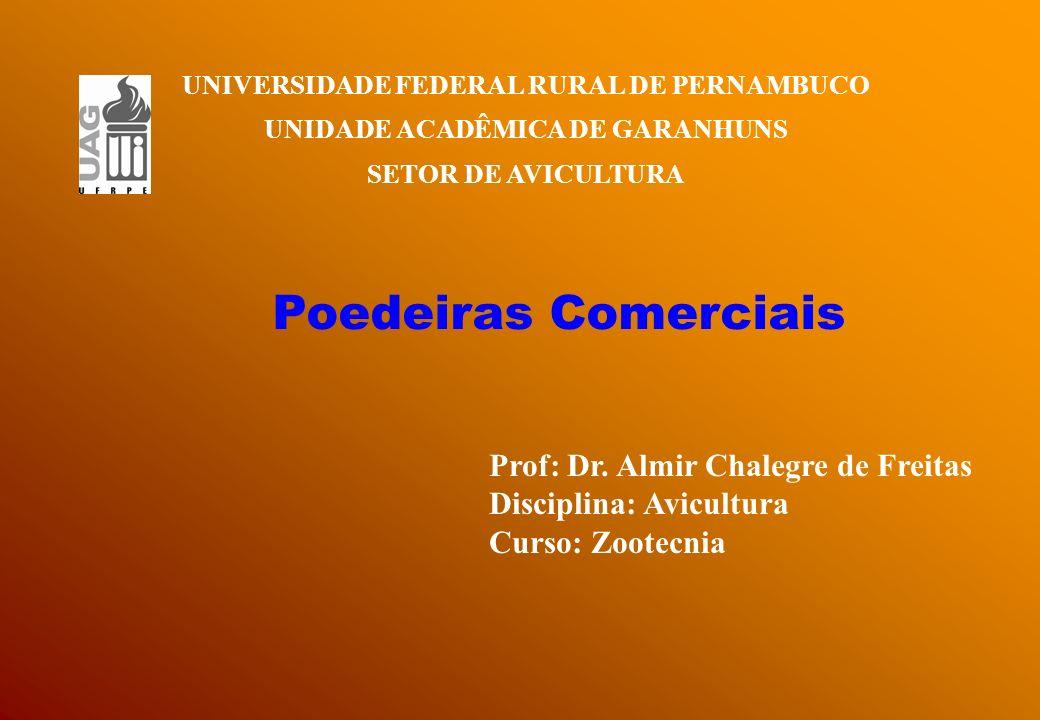 UNIVERSIDADE FEDERAL RURAL DE PERNAMBUCO UNIDADE ACADÊMICA DE GARANHUNS SETOR DE AVICULTURA Poedeiras Comerciais Prof: Dr. Almir Chalegre de Freitas D