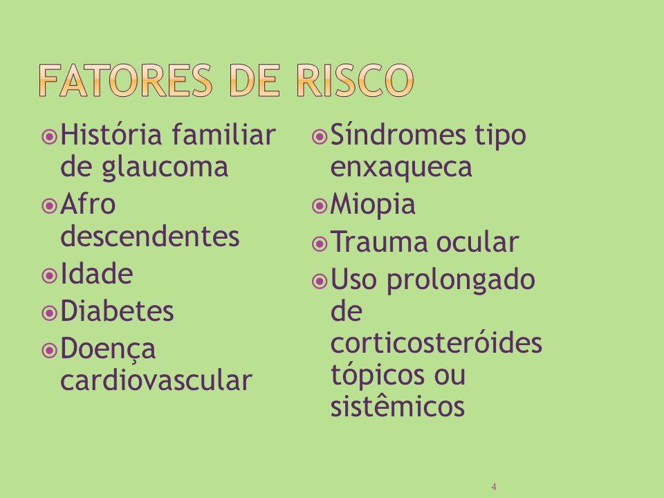 História familiar de glaucoma Afro descendentes Idade Diabetes Doença cardiovascular Síndromes tipo enxaqueca Miopia Trauma ocular Uso prolongado de c