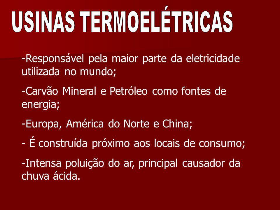 -Responsável pela maior parte da eletricidade utilizada no mundo; -Carvão Mineral e Petróleo como fontes de energia; -Europa, América do Norte e China