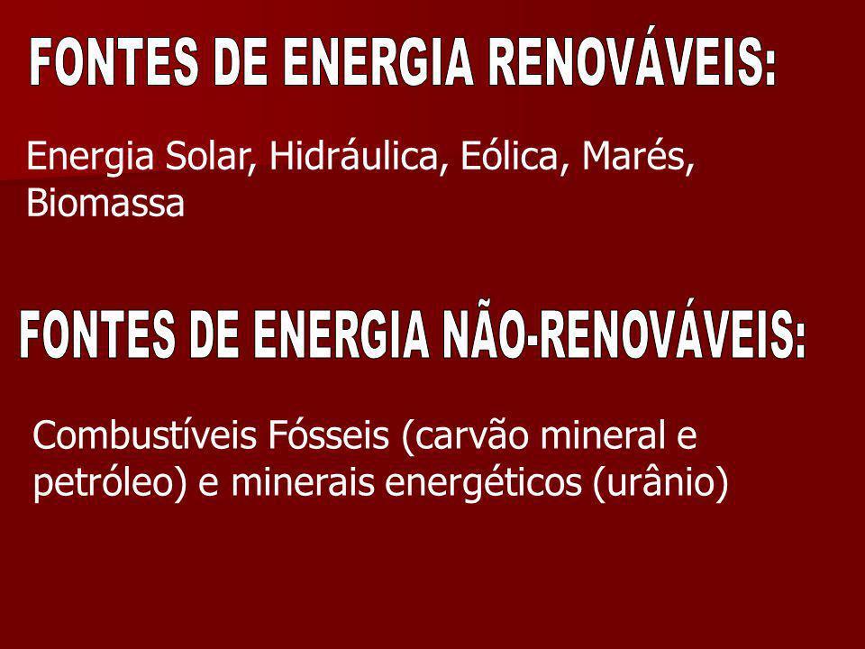 Energia Solar, Hidráulica, Eólica, Marés, Biomassa Combustíveis Fósseis (carvão mineral e petróleo) e minerais energéticos (urânio)