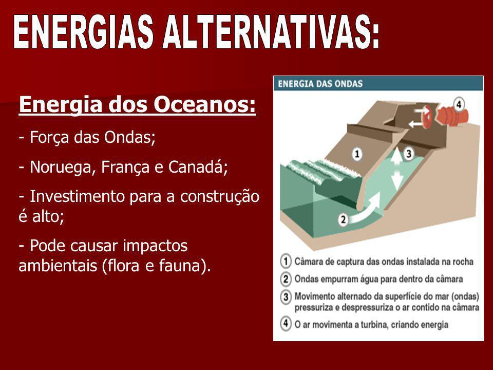 Energia dos Oceanos: - Força das Ondas; - Noruega, França e Canadá; - Investimento para a construção é alto; - Pode causar impactos ambientais (flora
