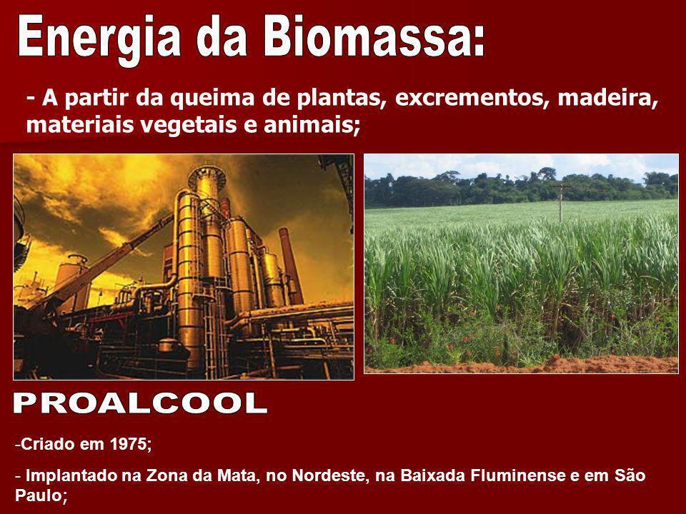 - A partir da queima de plantas, excrementos, madeira, materiais vegetais e animais; -Criado em 1975; - Implantado na Zona da Mata, no Nordeste, na Ba