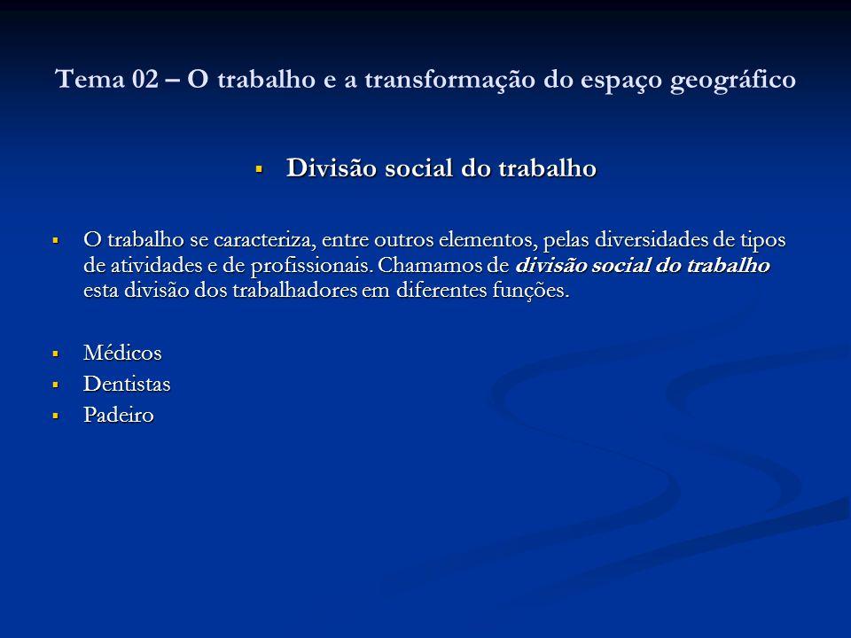 Divisão social do trabalho Divisão social do trabalho O trabalho se caracteriza, entre outros elementos, pelas diversidades de tipos de atividades e d