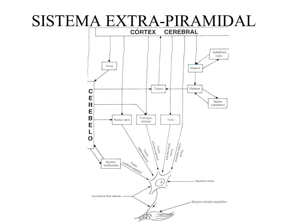 SISTEMA EXTRA-PIRAMIDAL