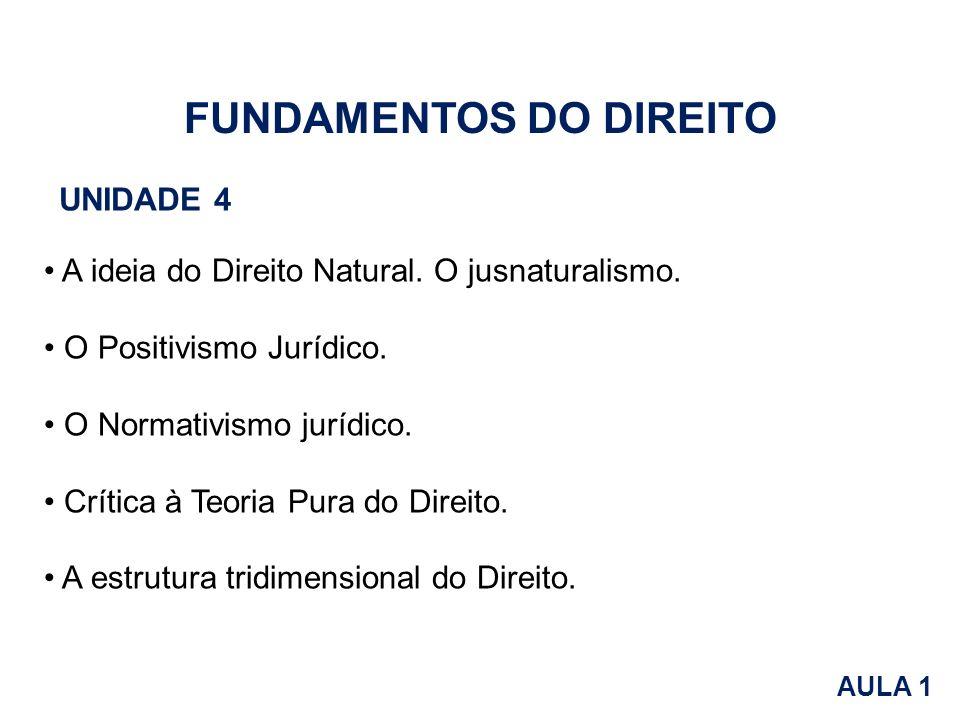 FUNDAMENTOS DO DIREITO UNIDADE 4 A ideia do Direito Natural. O jusnaturalismo. O Positivismo Jurídico. O Normativismo jurídico. Crítica à Teoria Pura