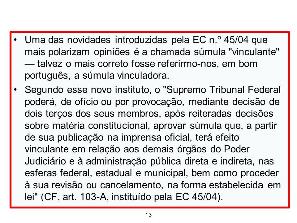Uma das novidades introduzidas pela EC n.º 45/04 que mais polarizam opiniões é a chamada súmula