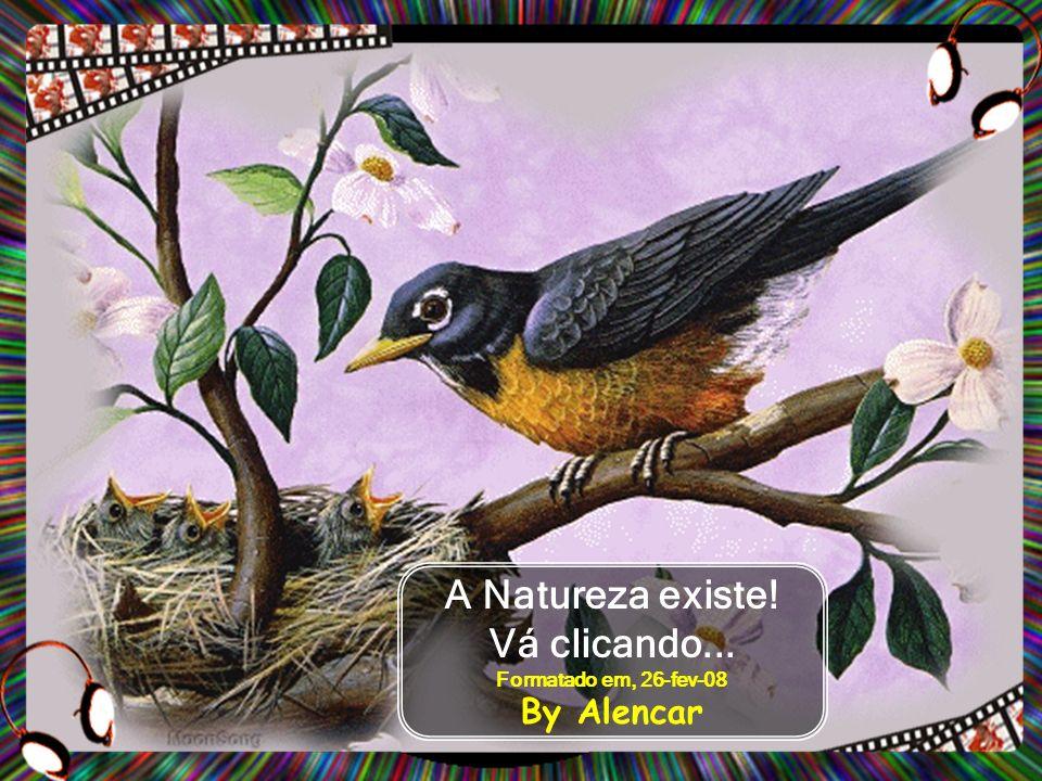 A Natureza existe! Vá clicando... Formatado em, 26-fev-08 By Alencar