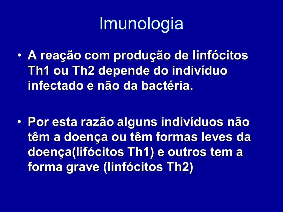 Imunologia A reação com produção de linfócitos Th1 ou Th2 depende do indivíduo infectado e não da bactéria.A reação com produção de linfócitos Th1 ou
