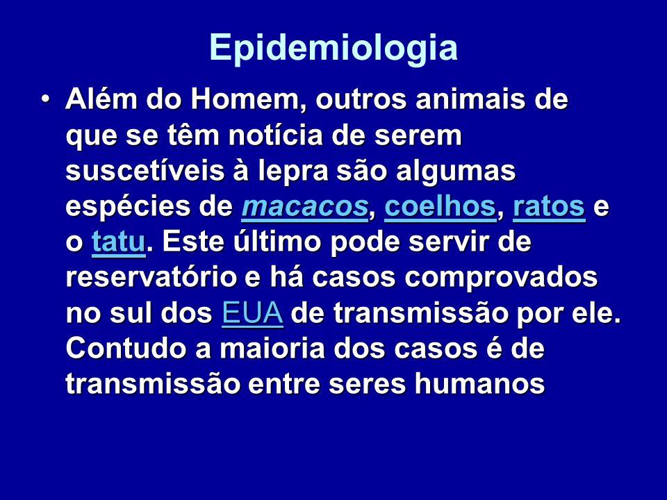 Epidemiologia Além do Homem, outros animais de que se têm notícia de serem suscetíveis à lepra são algumas espécies de macacos, coelhos, ratos e o tat