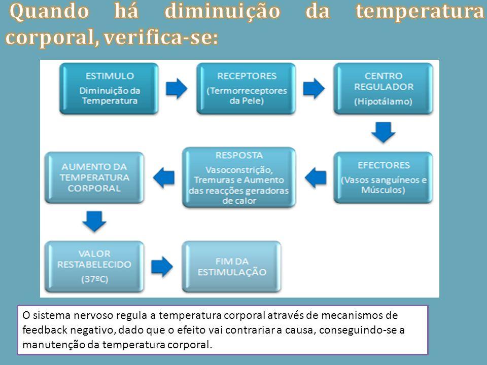 O sistema nervoso regula a temperatura corporal através de mecanismos de feedback negativo, dado que o efeito vai contrariar a causa, conseguindo-se a
