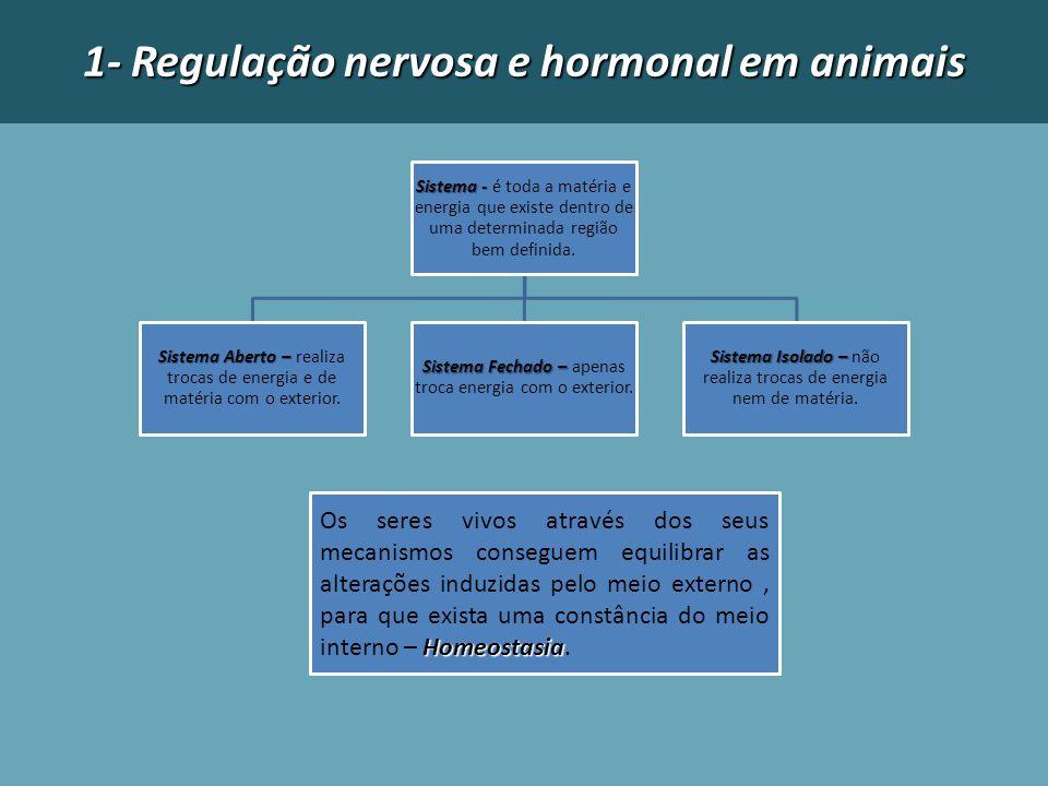 1- Regulação nervosa e hormonal em animais Sistema - Sistema - é toda a matéria e energia que existe dentro de uma determinada região bem definida. Si