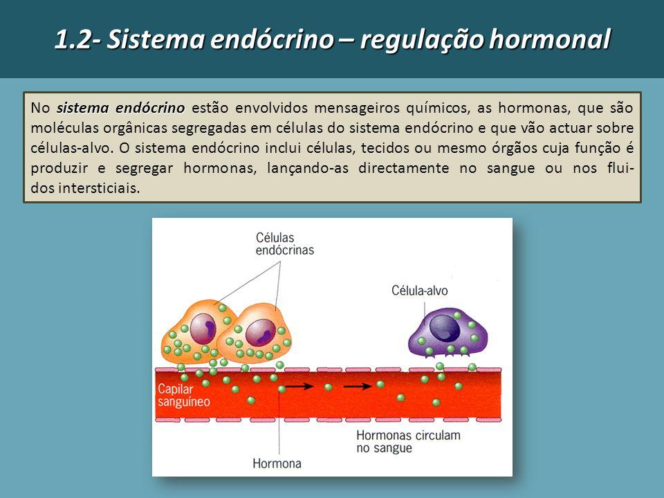 1.2- Sistema endócrino – regulação hormonal sistema endócrino No sistema endócrino estão envolvidos mensageiros químicos, as hormonas, que são molécu