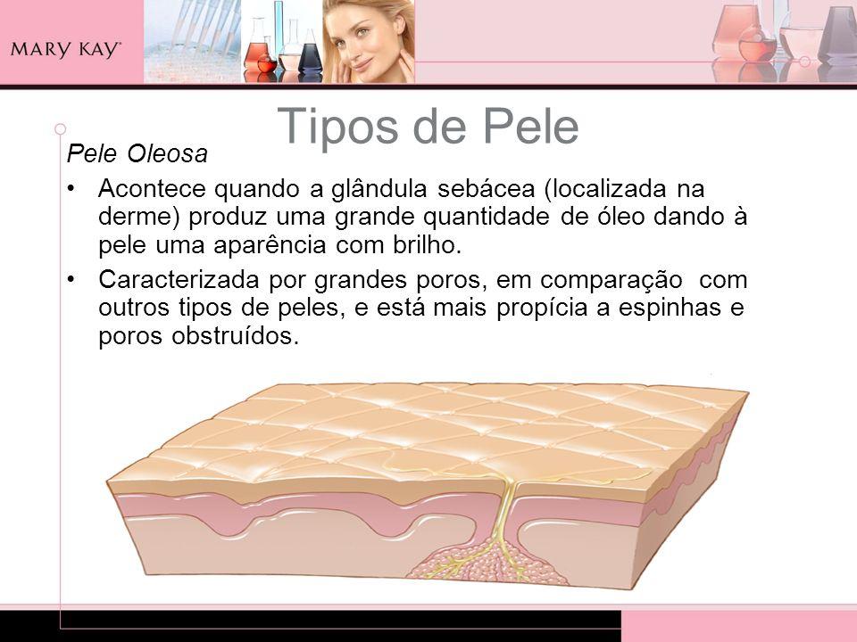 Tipos de Pele Pele Oleosa Acontece quando a glândula sebácea (localizada na derme) produz uma grande quantidade de óleo dando à pele uma aparência com