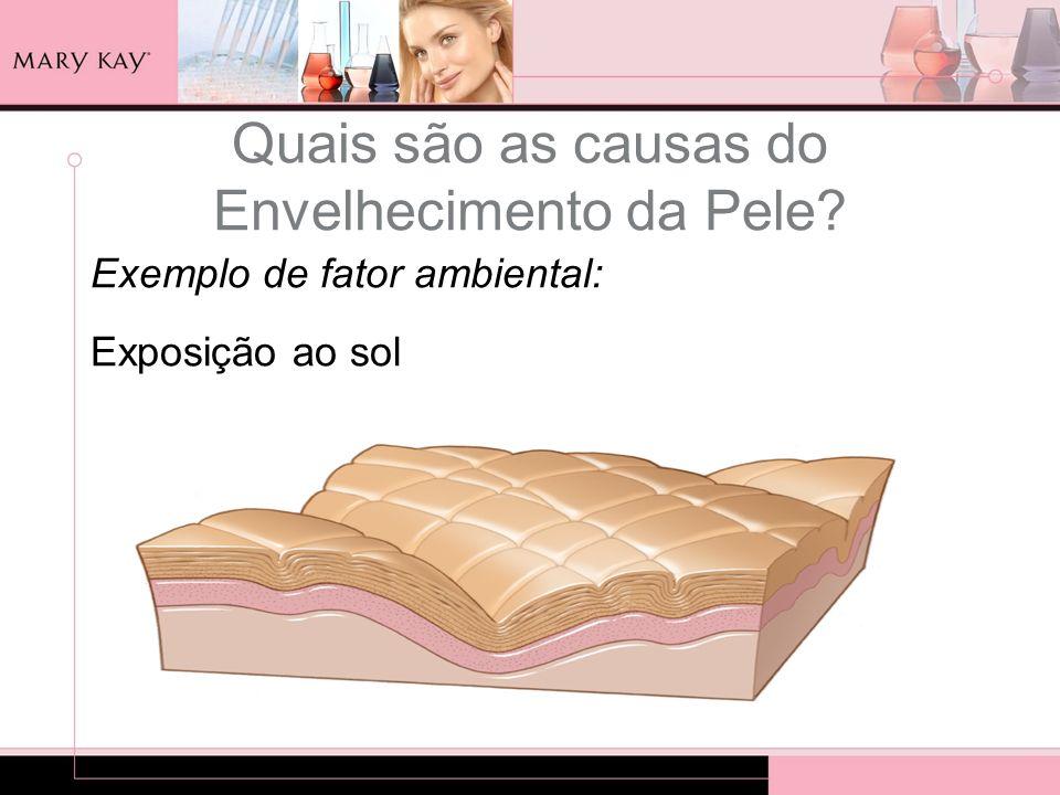Quais são as causas do Envelhecimento da Pele? Exemplo de fator ambiental: Exposição ao sol
