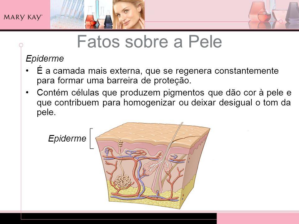 Epiderme É a camada mais externa, que se regenera constantemente para formar uma barreira de proteção. Contém células que produzem pigmentos que dão c