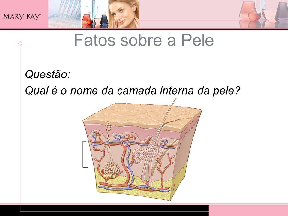 Questão: Qual é o nome da camada interna da pele? Fatos sobre a Pele