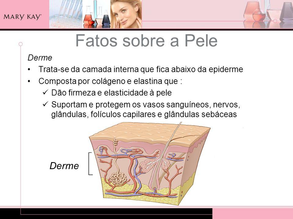 Derme Trata-se da camada interna que fica abaixo da epiderme Composta por colágeno e elastina que : Dão firmeza e elasticidade à pele Suportam e prote