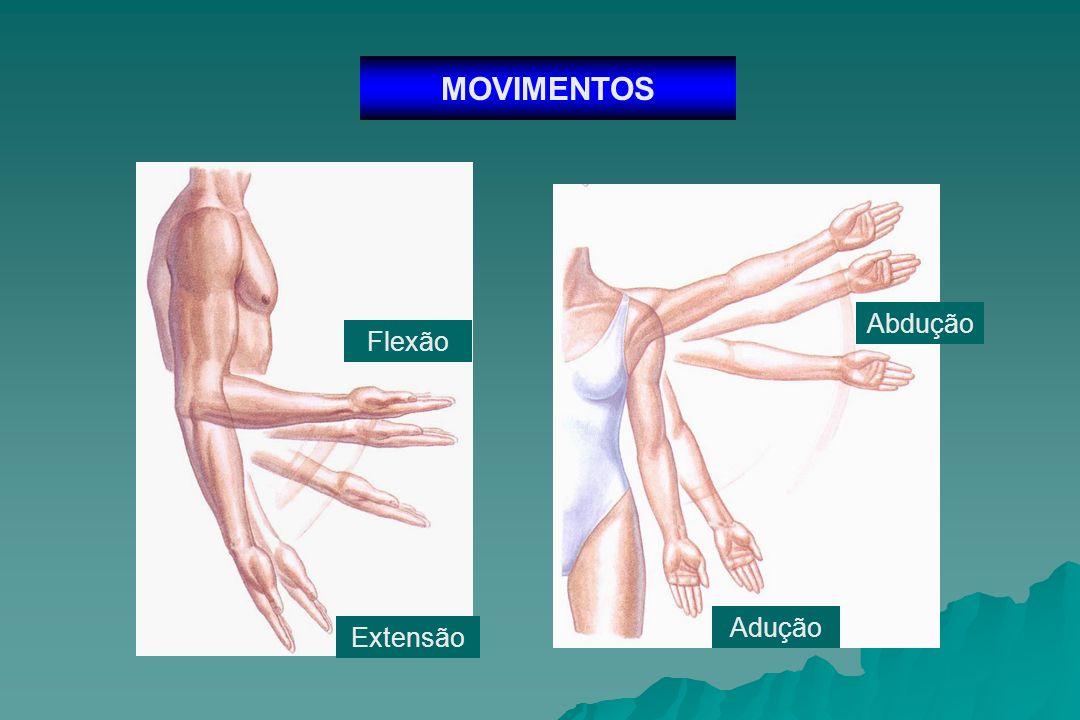 MOVIMENTOS Circundução Rotação