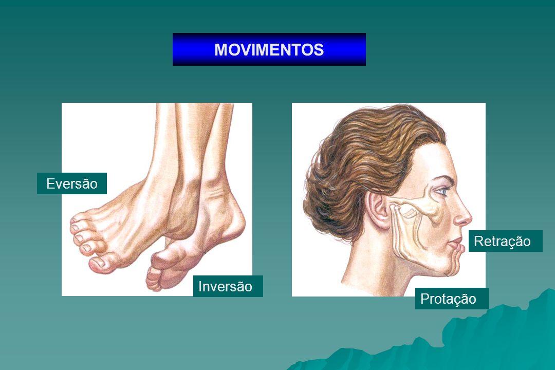 MOVIMENTOS Pronação Supinação