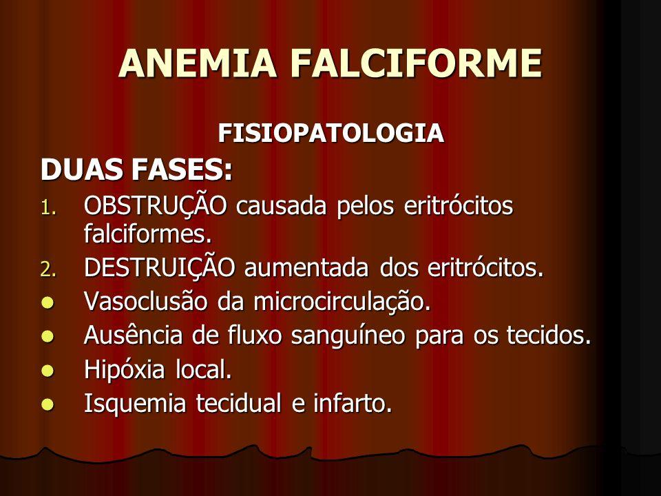 ANEMIA FALCIFORME FISIOPATOLOGIA DUAS FASES: 1. OBSTRUÇÃO causada pelos eritrócitos falciformes. 2. DESTRUIÇÃO aumentada dos eritrócitos. Vasoclusão d