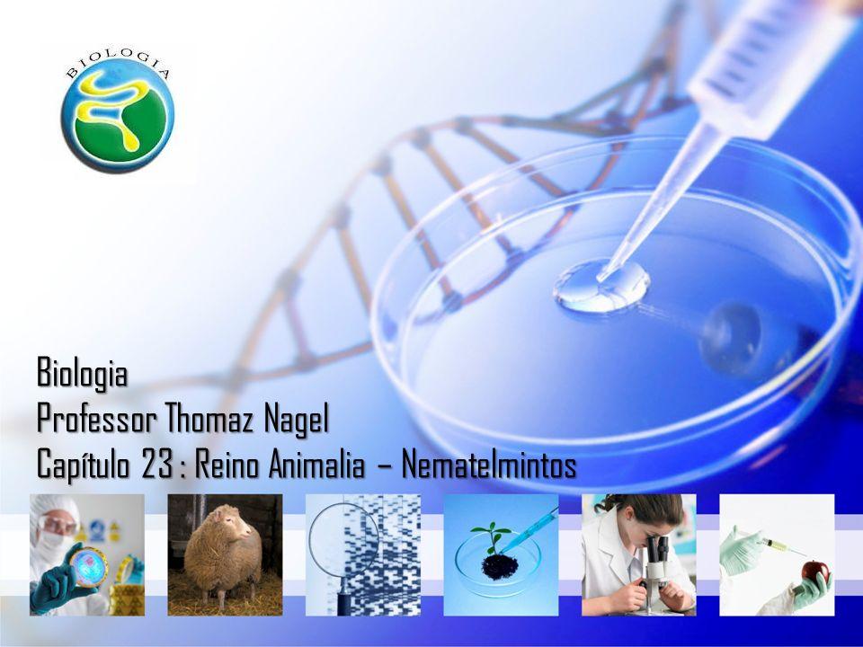 Biologia Professor Thomaz Nagel Capítulo 23 : Reino Animalia – Nematelmintos