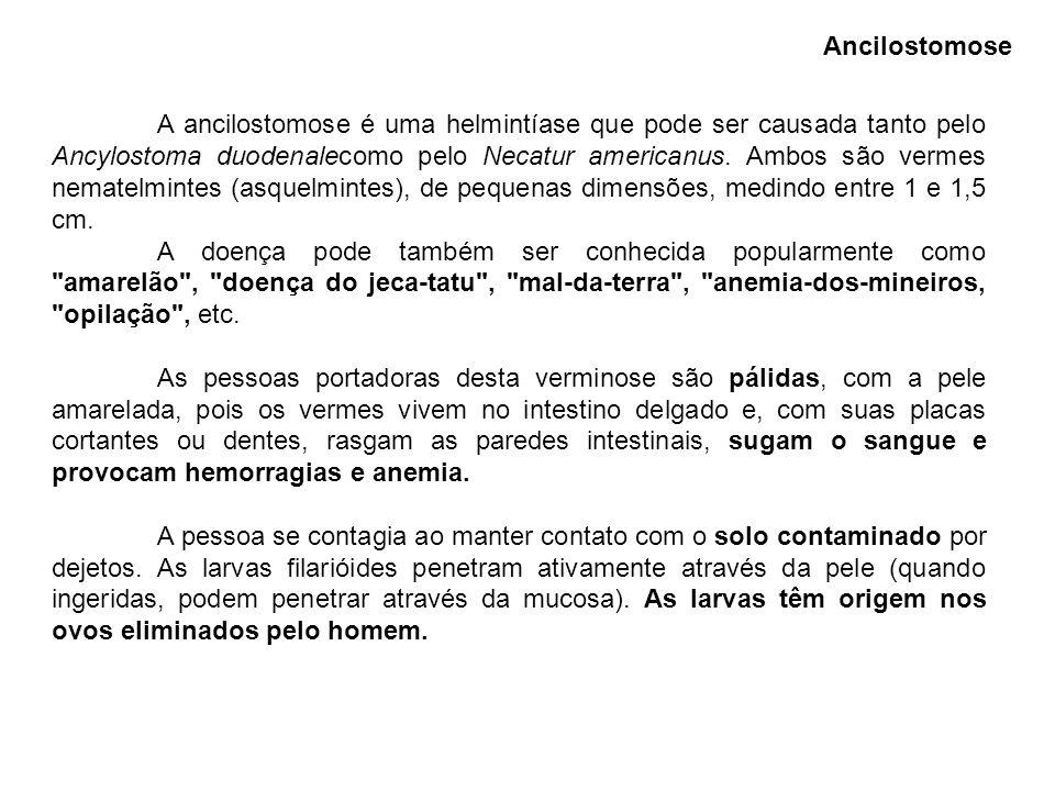 A ancilostomose é uma helmintíase que pode ser causada tanto pelo Ancylostoma duodenalecomo pelo Necatur americanus. Ambos são vermes nematelmintes (a