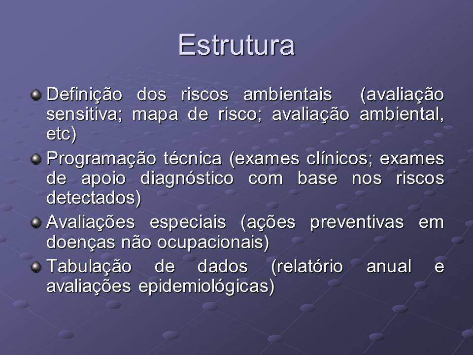 Estrutura Definição dos riscos ambientais (avaliação sensitiva; mapa de risco; avaliação ambiental, etc) Programação técnica (exames clínicos; exames
