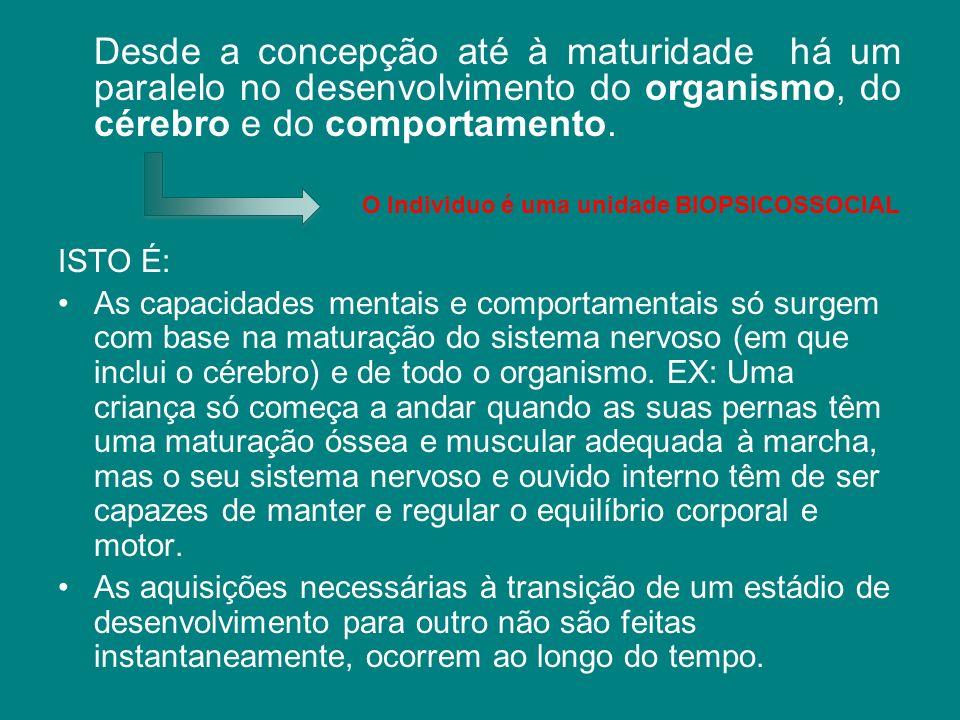 Desde a concepção até à maturidade há um paralelo no desenvolvimento do organismo, do cérebro e do comportamento. ISTO É: As capacidades mentais e com