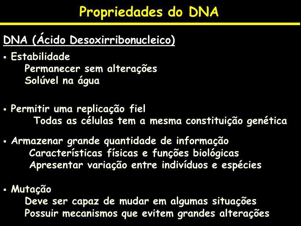 Propriedades do DNA DNA (Ácido Desoxirribonucleico) Estabilidade Permanecer sem alterações Solúvel na água Permitir uma replicação fiel Todas as célul