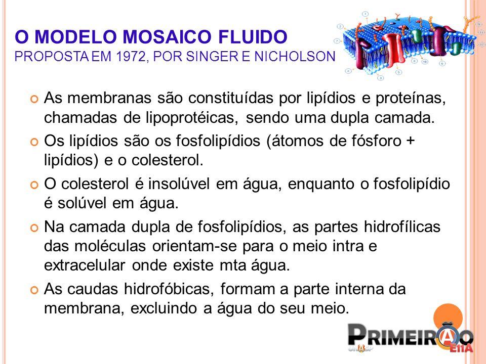 A movimentação dos lipídios é chamada de fluidez.Mas a m.p.