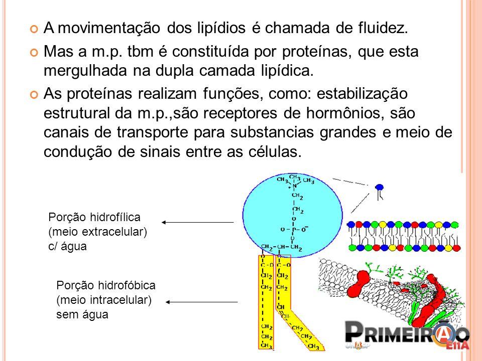 A movimentação dos lipídios é chamada de fluidez. Mas a m.p. tbm é constituída por proteínas, que esta mergulhada na dupla camada lipídica. As proteín