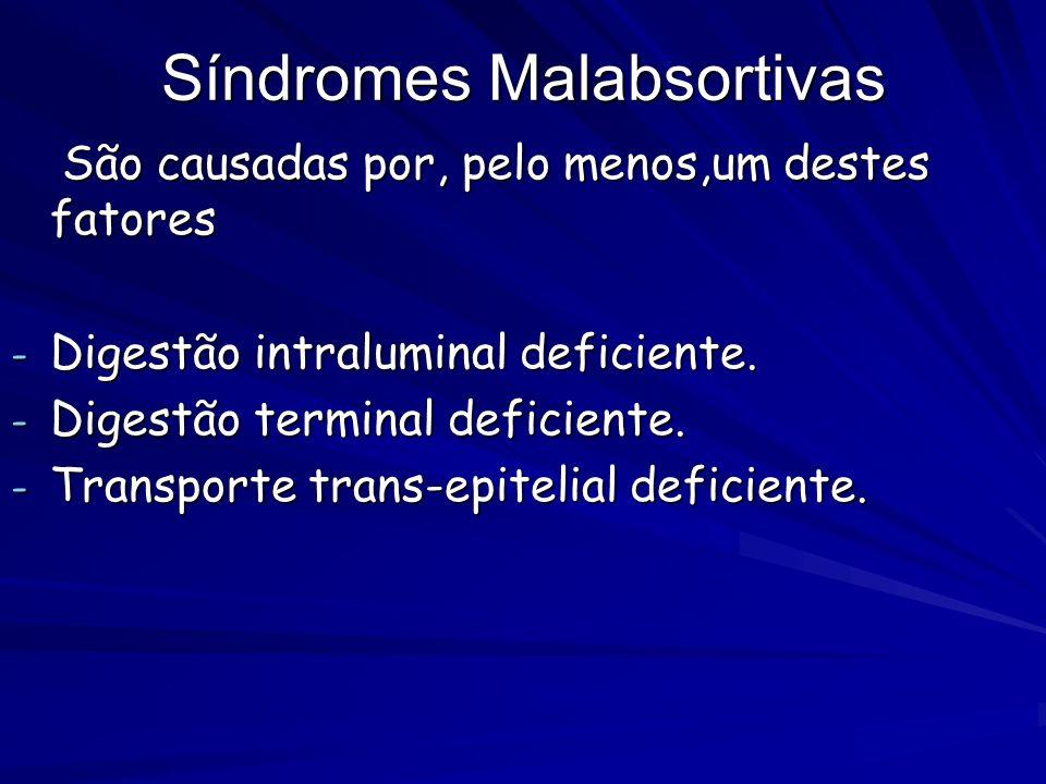 Síndromes Malabsortivas São causadas por, pelo menos,um destes fatores São causadas por, pelo menos,um destes fatores - Digestão intraluminal deficien