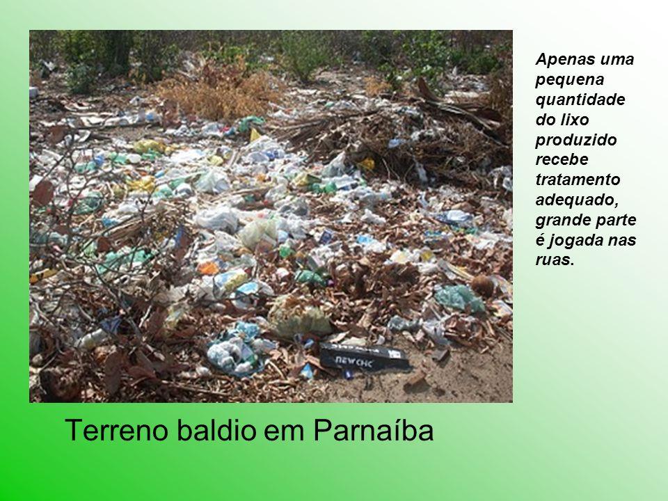 Apenas uma pequena quantidade do lixo produzido recebe tratamento adequado, grande parte é jogada nas ruas.