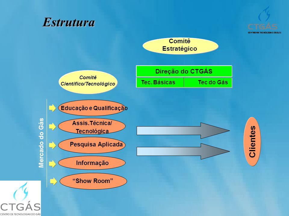 Estrutura Pesquisa Aplicada Comitê Científico/Tecnológico Clientes Assis.Técnica/ Tecnológica Informação Educação e Qualificação Comitê Estratégico Di