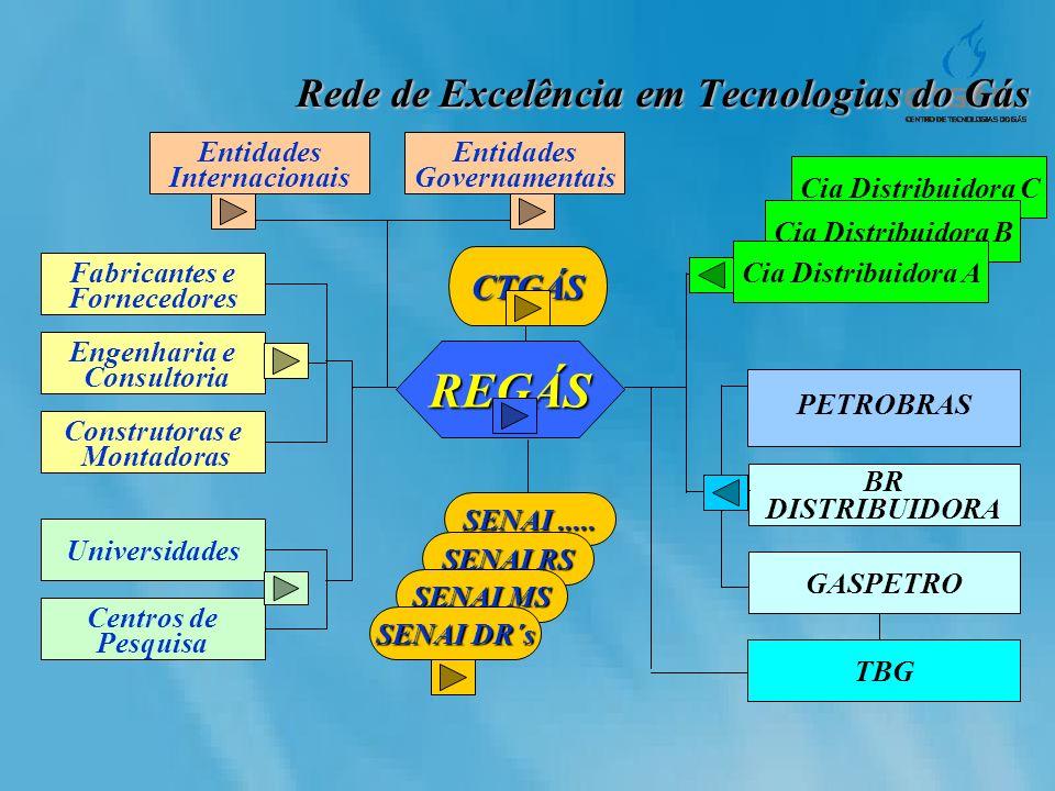 Cia Distribuidora C Cia Distribuidora B Rede de Excelência em Tecnologias do Gás Entidades Governamentais Fabricantes e Fornecedores Engenharia e Cons