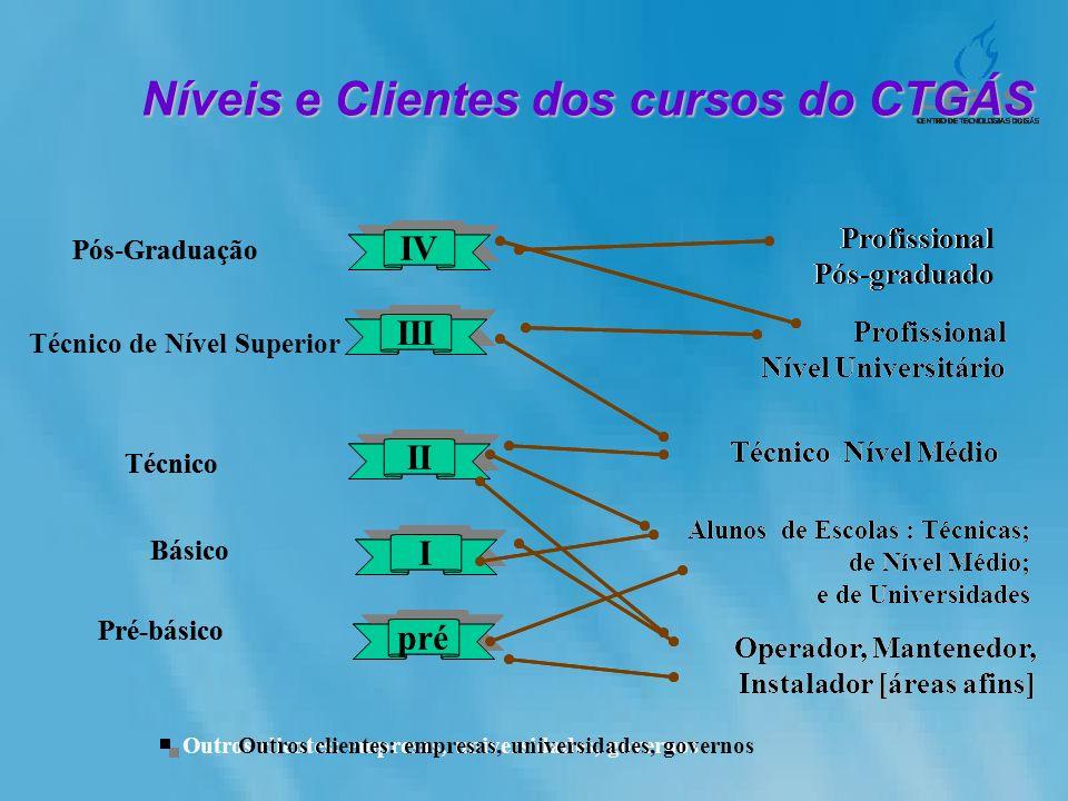 Técnico de Nível Superior Técnico Básico Pré-básico Operador, Mantenedor, Instalador [áreas afins] Técnico Nível Médio Profissional Nível Universitári