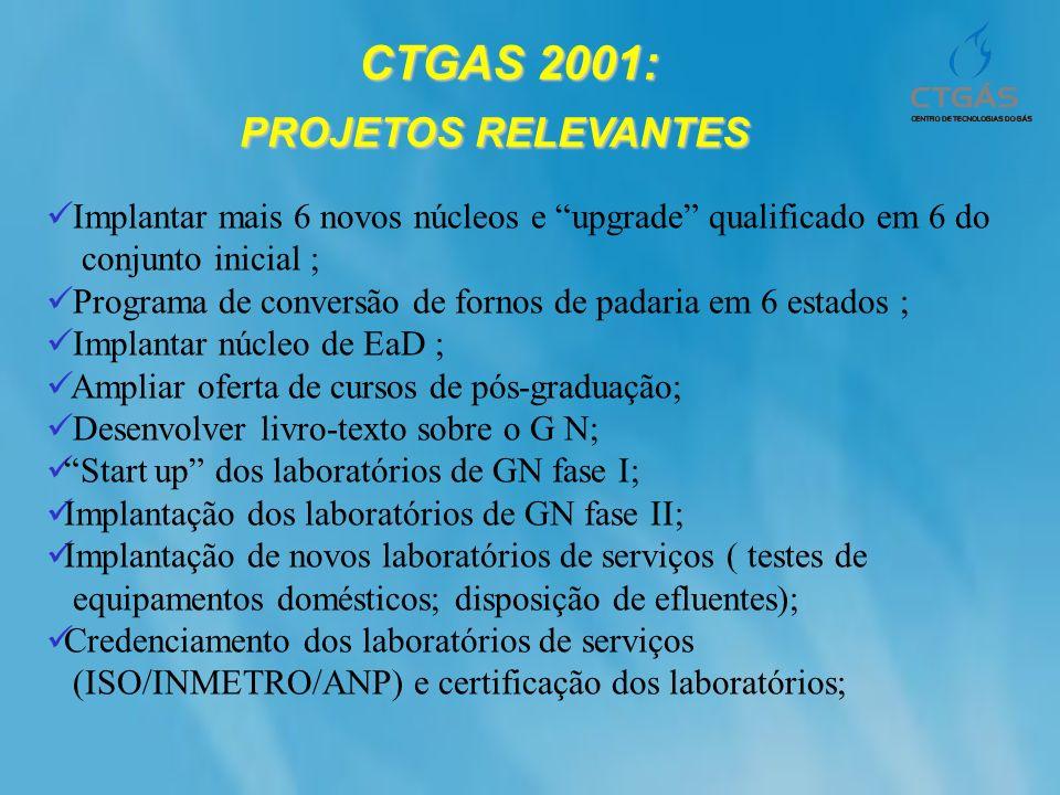 CTGAS 2001: CTGAS 2001: PROJETOS RELEVANTES Implantar mais 6 novos núcleos e upgrade qualificado em 6 do conjunto inicial ; Programa de conversão de f
